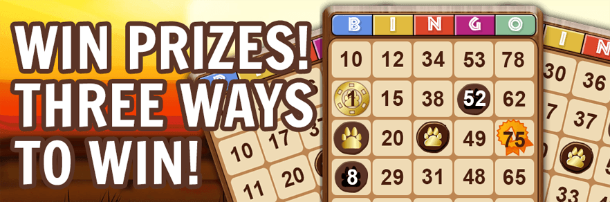 play free bingo for cash prizes