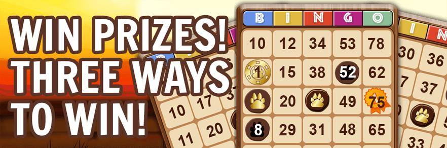 Bingo Online For Cash